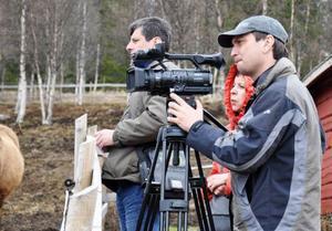 Mellan fyra och åtta tv-inslag kan det bli efter rundresan i Jämtland.