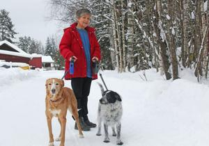 Karin Johansson, ordförande i Naturskyddsföreningen Sollefteå tycker att vår kunskap om rovdjuren måste bättras. Särskilt med tanke på vargdebatten.