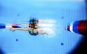 Sista deltävlingen av fyra avgjordes för de allra yngsta tävlingssimmarna i går på Östbergsbadet.  Foto: Henrik Flygare