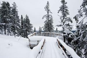 Det snövita täcket bäddar in land och skog.