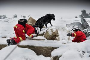 Internationella räddningshundar. På bilden ses Karlskonabon Karin Råberg och hennes flatcoated retriever hund, samt Maud Karlsson från Öland.