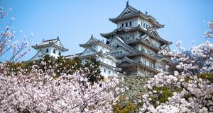 Tokyo är en av de städer som utsetts till bästa resmål av The Guardian.