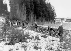 Personal och elever på vårdskolan i Sundsvall, där Johans mamma Anna-Clara jobbade som lärare, deltog också i sökandet.