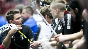 Andreas Lundmark, här som tränare för Falun som han vann SM-guld med som assisterande tränare 2013.