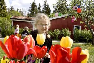 Vinnande koncept. Sexåriga Saga Lövblad gjorde skissen som tog hem priset.
