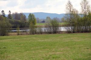 Blandningen av slåtterängar och översvämningsängar ger Sässman-området dess speciella karaktär. Risken för översvämningar har även inneburit att man låtit bli att bygga så mycket i området.