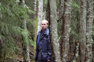 Pär Lundagårds konstaterar att lindar ska normalt inte finnas så här långt norrut och lindarna på Järvsö klack är sannolikt inte planterade.
