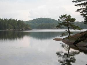 Tiveden.Foto: Rolf Löfgren/Naturvårdsverket