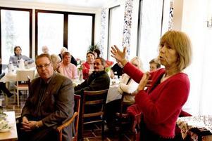 VISION. Kommunstyrelsen i Sandviken peppades av landshövding Barbro Holmberg inför två dagars visionsarbete, där rösterna från Vision 2025 ska reduceras ner till ett A4.