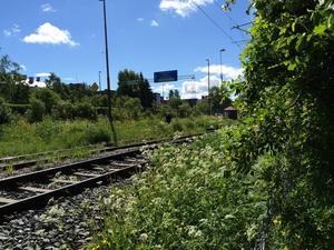 Polisen söker bland annat efter järnvägsspåret vid Badhusparken.