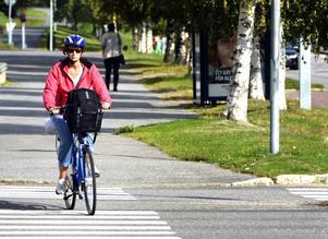Skribenten tycker att byggandet av cykelbanor är bortkastade pengar.