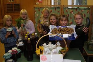 Carolin Sträng, Amanda Nilsson, Julia Jonsson, Isabelle Schmidt, Malin Holmström och Simon Enros med en del av utbudet på odlarskolan i Strömsbruk.