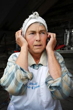 Oron är stor sedan getterna börjat att försvinna på betet. Birgitta ringer Lena som vallar. Hur beter sig getterna, är de rädda?