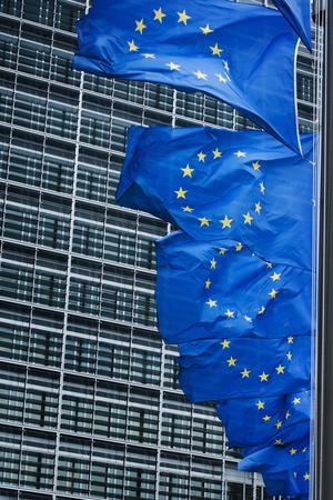 INget monster. Kan ett starkt EU minska främlings- fientlighetet? Bilden visar EU-flaggan. Foto: Scanpix TT