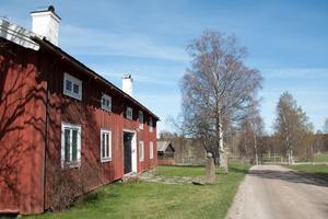 I de vackra omgivningarna kring företagarna på Ystegårn kommer det att finnas djur i hagarna.