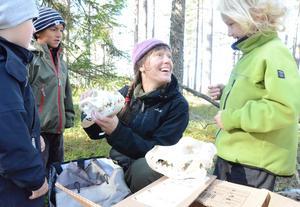 Naturskola i Getapulien. Melvin Sundman, David Levin och Ivar Jennessen Nordström på naturskola med Maria Levin. Gissa djuret är uppgiften, kraniet tillhör en varg.