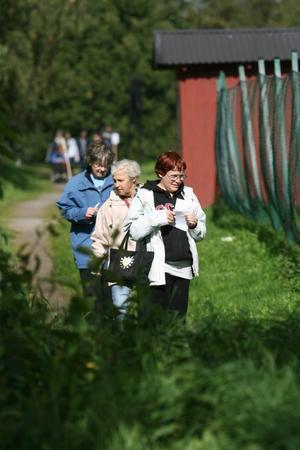Mona Söderling, Solveig Neander och Inga-Britt Persson letar efter frågor på tipspromenaden.