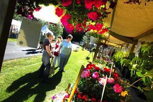 Strålande sol. Vädret kunde ingen klaga på när Trädgård Mitt 2007 startade på lördagsmorgonen.