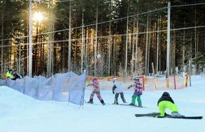 Januarisolen tittar fram mellan träden och lyser på de slalomsugna ungdomarna.
