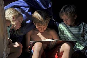 Läsning är en hjärtefråga för Folkpartiet inför valet. Flera andra partier siktar mer generellt in sig på barns och ungas rätt till kultur.