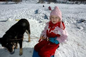 KOMPISAR. Tilda Fredriksson sitter och täljer med sin nya kompis, naturskolehunden