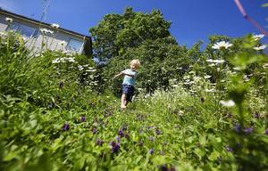 Farmors trädgård  är ett paradis för en leklysten treåring med sinne för allt det sköna  och roliga som finns  i naturen.