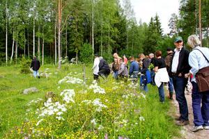 Ett helt gäng hade samlats för att lära sig mer om växterna vi har omkring oss.
