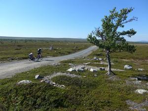 Elvaårige Hjalmar älskar skumpiga cykelvägar och det får gärna kränga till ordentligt för att det ska vara riktigt roligt.