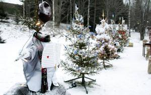 Det var även en julgranstävling, Gran Prix, mellan 8 körer. Publiken fick rösta och den gran som vann var nummer 3, även på bilden, Caming Gospel med genomskinliga plastkulehalsband och vita boahalsdukar.