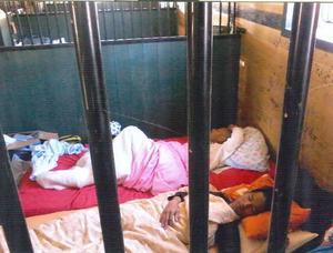 Gästarbetarna från Kambodja fick sova på golvet i spiltorna i häststallet, i lukten av hästavföring.