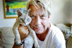 Två själsfränder har återförenats. Nu sover katten Zingo på husse Billy Hildessons arm om nätterna igen.