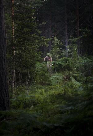 Näcken skymtas i skogen.
