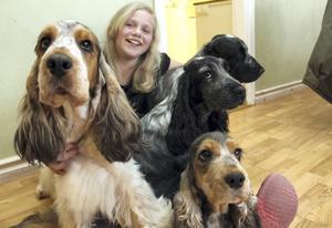 Amanda Jangestig älskar hundar, speciellt cocker spaniels. Till vänster är Amandas egen hund Aron.