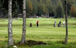 Gnarpsbaden golfklubb startades 1990. Trots konkursen tror ordförande Håkan Edholm att det blir en nystart.