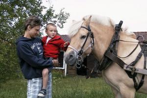 Det var många barn som ville åka häst och vagn. Susanne Rosenqvist och lille William, 4 år, fick klappa den fina hästen Ior först.