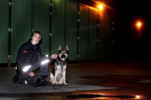 Sammanlagt åtta hundar har Sune Åström haft med i tjänsten som vaktman. Tillsammans med Jarro, 1,5 år har de klivit in i famnen på flera inbrottstjuvar och det bara under den senaste månaden.