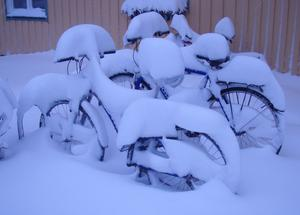Cyklar i vinterskrud.