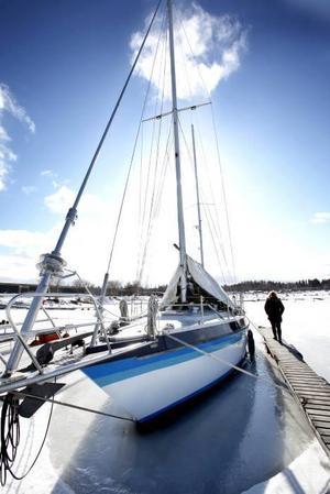 Vårljuset har kommit, men båtägarna lär dröja. Vårvärmen var som bortblåst med de kalla nordanvindarna i Fliskkär i går.
