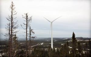 """""""Enligt en ny rapport skulle Sverige som land tjäna på att bli stor en nettoexportör av el"""", skriver skribenten."""