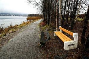 Nya bänkar finns utplacerade längs promenadvägen i Skönsberg men de gamla står fortfarande kvar.