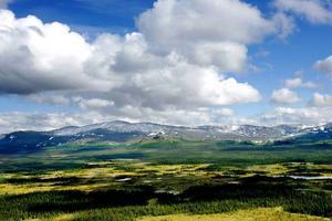 Sommartid är det främst fjällvandring som är den aktivitet som besökande turister vill utöva.