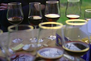 Cirka250 viner i beställningssortimentet har fått en kvalitetsanalys av vårvinprovare Sune Liljevall. Här får du tips på de röda som ger allra mestkaraktär och kvalitet för pengarna.