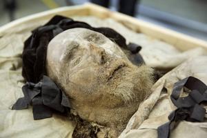 Fredagen den 10 april visades mumien av biskop Peder Winstrup, upp för press och media i Lund. Per Karsten, chef för Historiska museet i Lund  presenterade resultaten av olika undersökningar. Foto Ola Torkelsson/TT