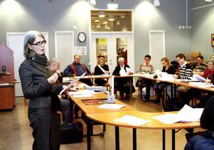 Konsulten Annika Larsson Maspers, tillfällig förvaltningschef för Utbildning och Arbete, presenterade den åtgärdsplan som tagits fram.
