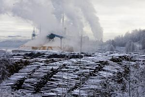 Pappers och massaindustrin måste få ner sina utsläpp av kväveoxider om Sverige ska klara EU:s krav. Foto: Maria Edstrand