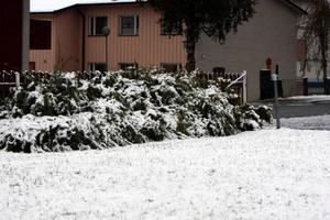 Snö i Härjedalen. Foto: Ulrika Andersson
