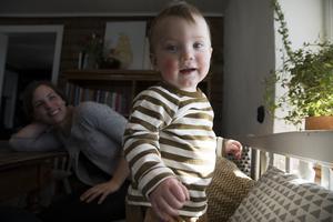Einar är yngst i familjen och trivs bra bland kuddarna i kökets kökssoffa.