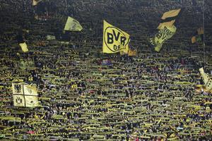 Brokvist dröm är att åstadkomma något i stil med Borussia Dortmunds gula vägg.