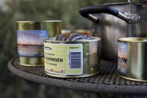 Nio olika surströmmingssorter har blivit testade i år.