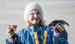 Vilken lycka, både grillad korv och en abborrfångst för Emilia Gruvensjö, 9 år.
